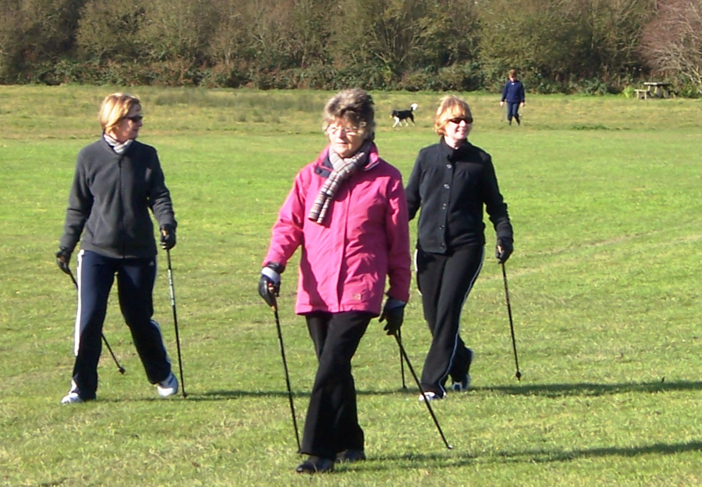 What is nordic walking? featured image
