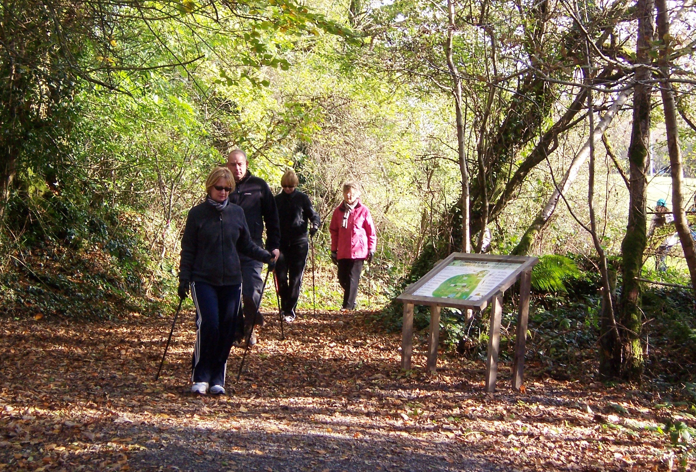nordic walking featured image