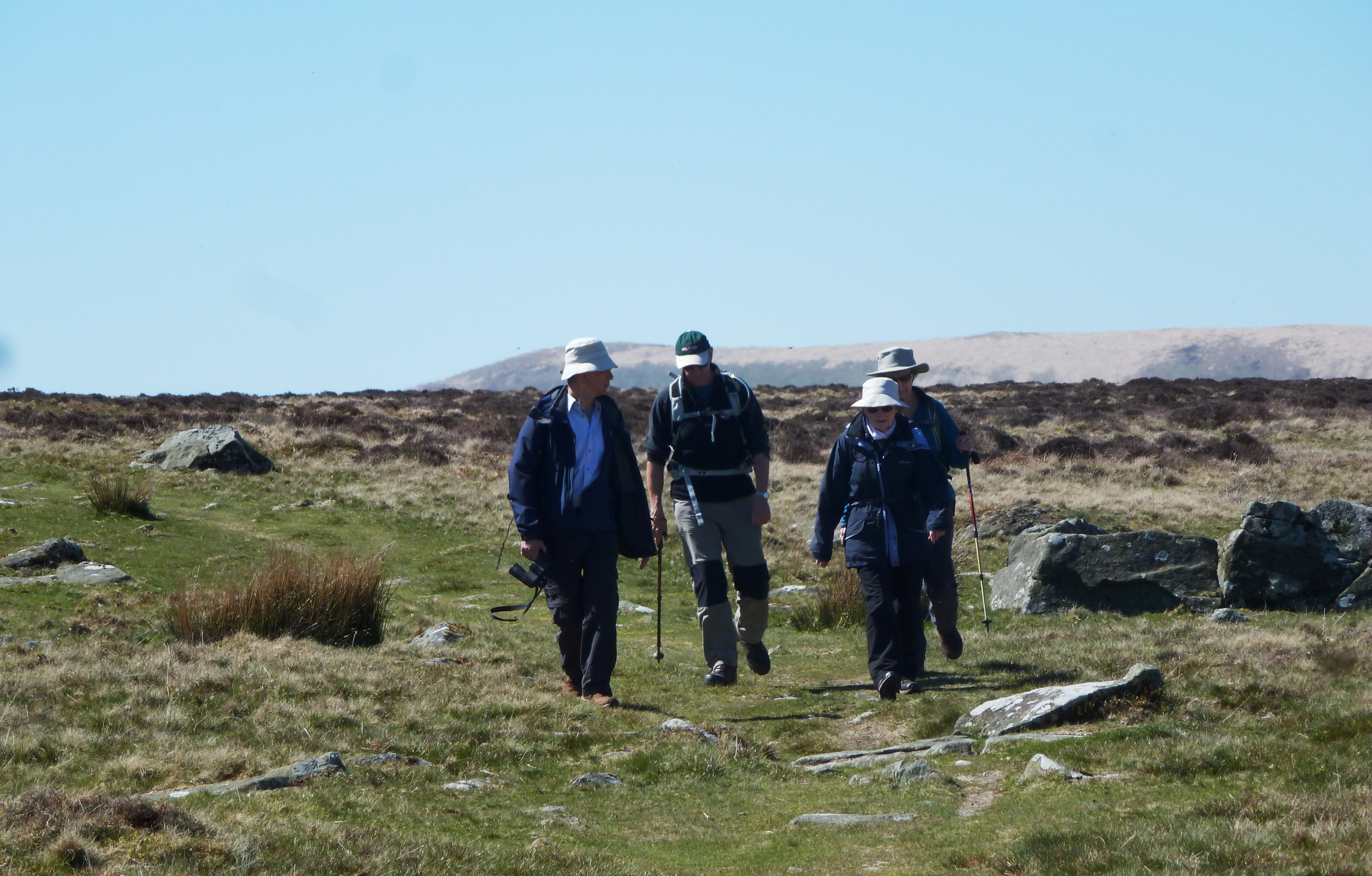 Guided walks and group walks featured image